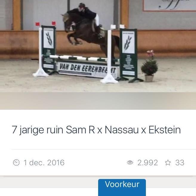 Sam R x Nassau x Ekstein