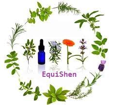 Cursussen acupressuur, massage of energetisch werk