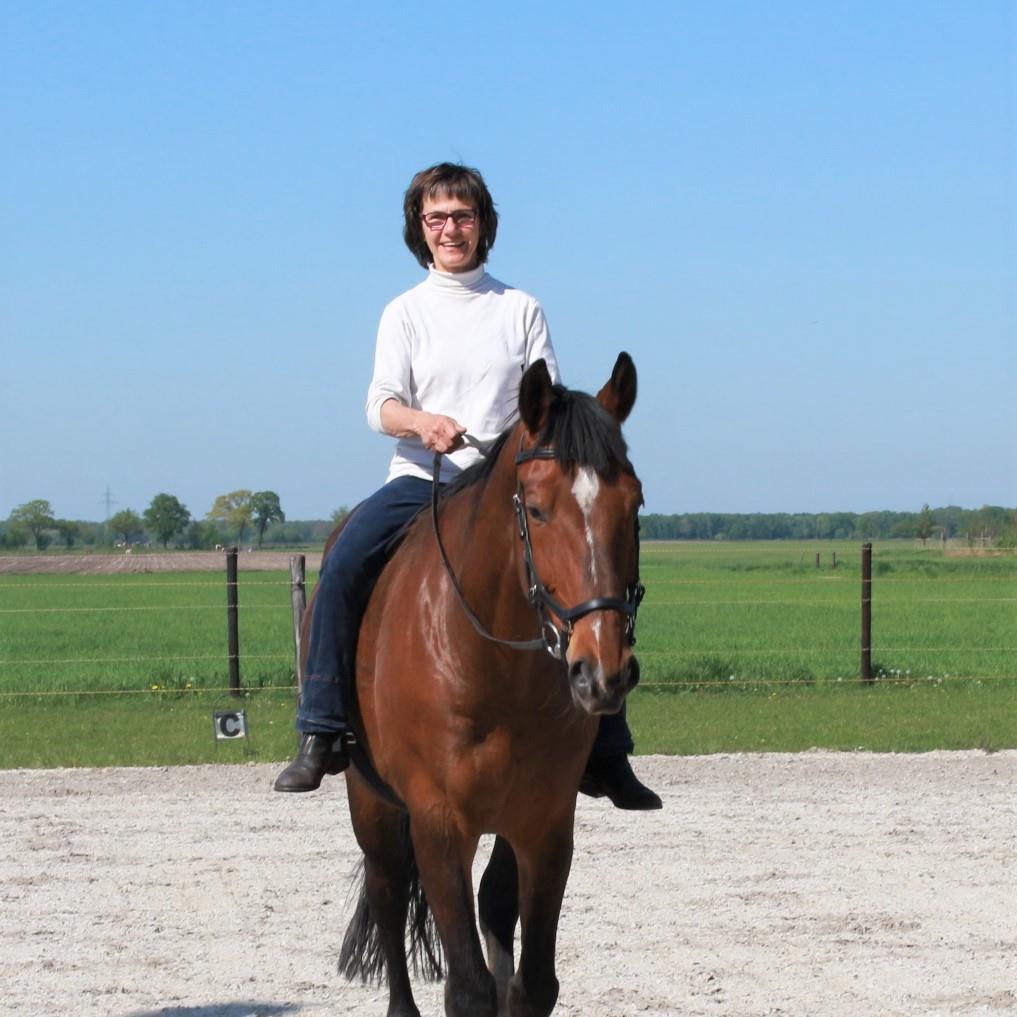 ieder geblesseerd paard verdient een nieuwe kans