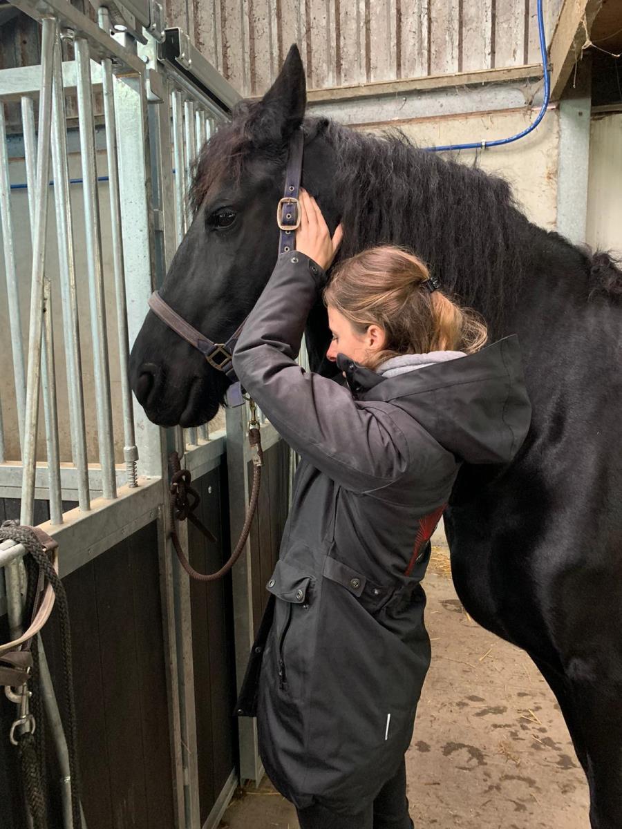 Wil jij je paard weer goed in balans krijgen?