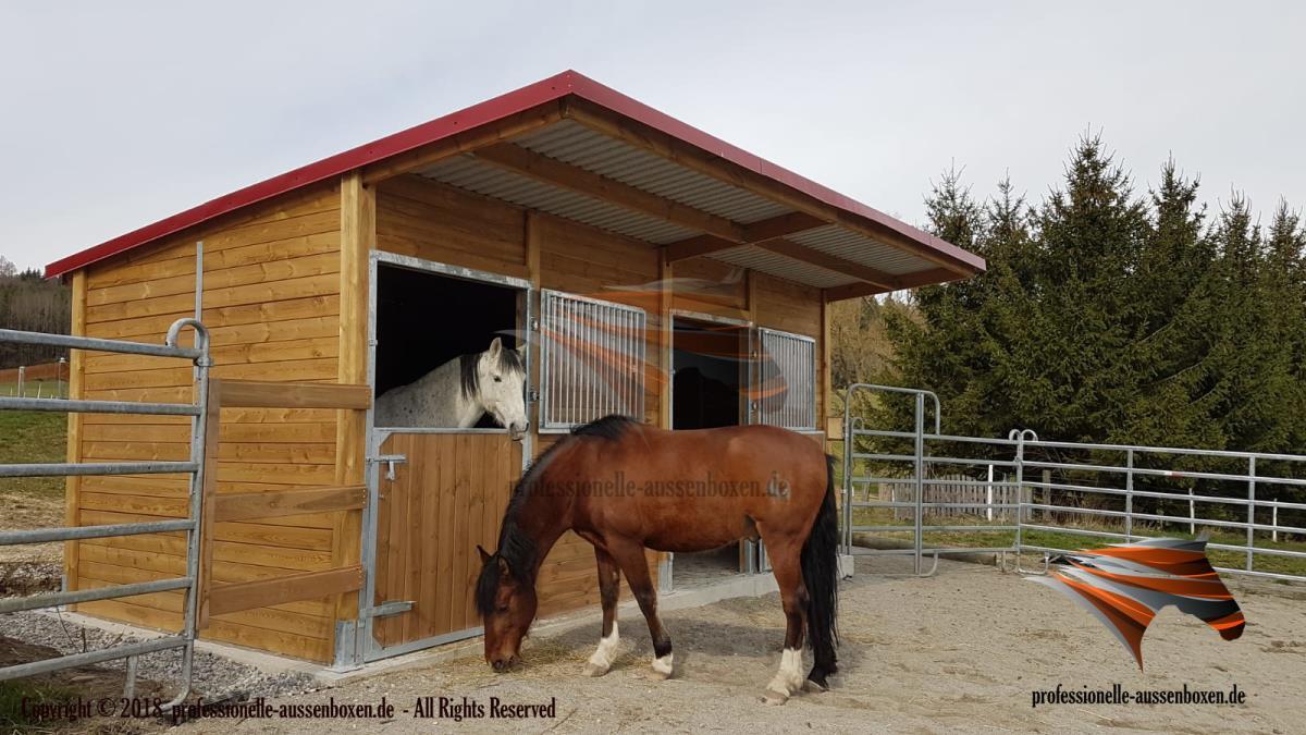 Buitenboxen, Paardenboxen, Paardenstallen,