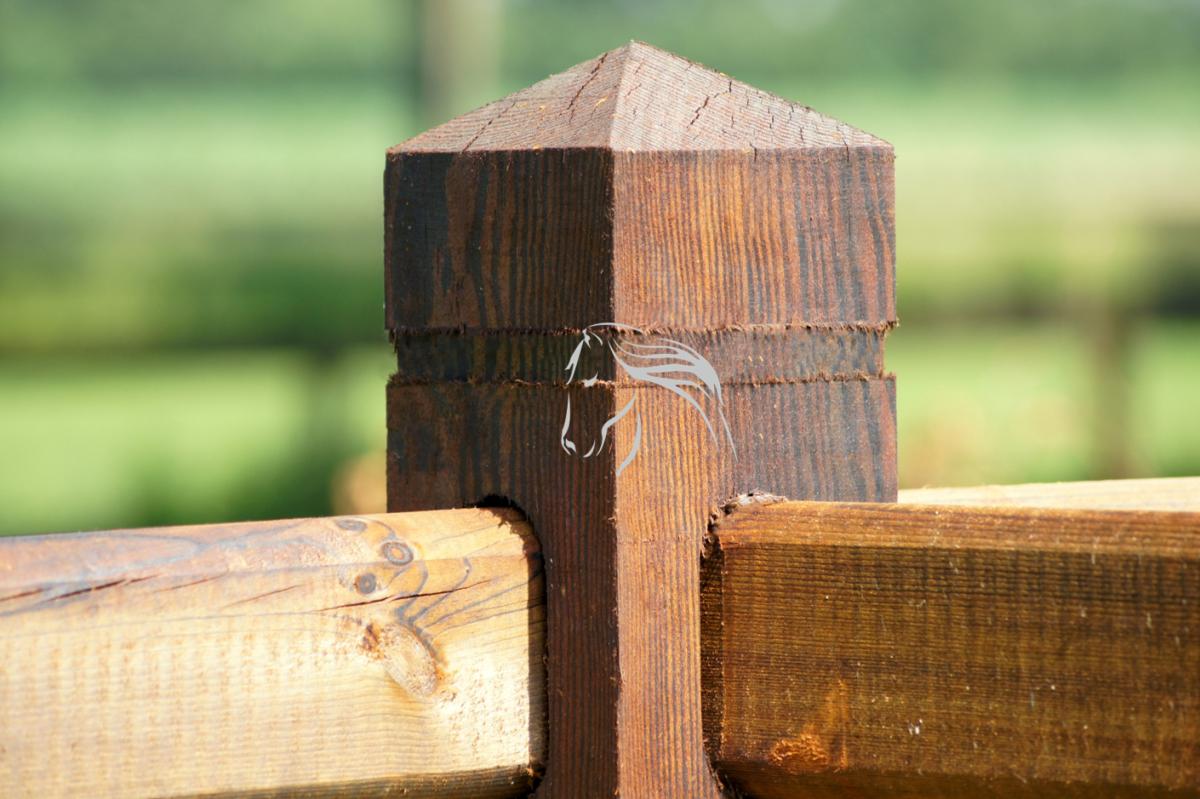 Veld's bouwpakket, omheining, weide, paddock