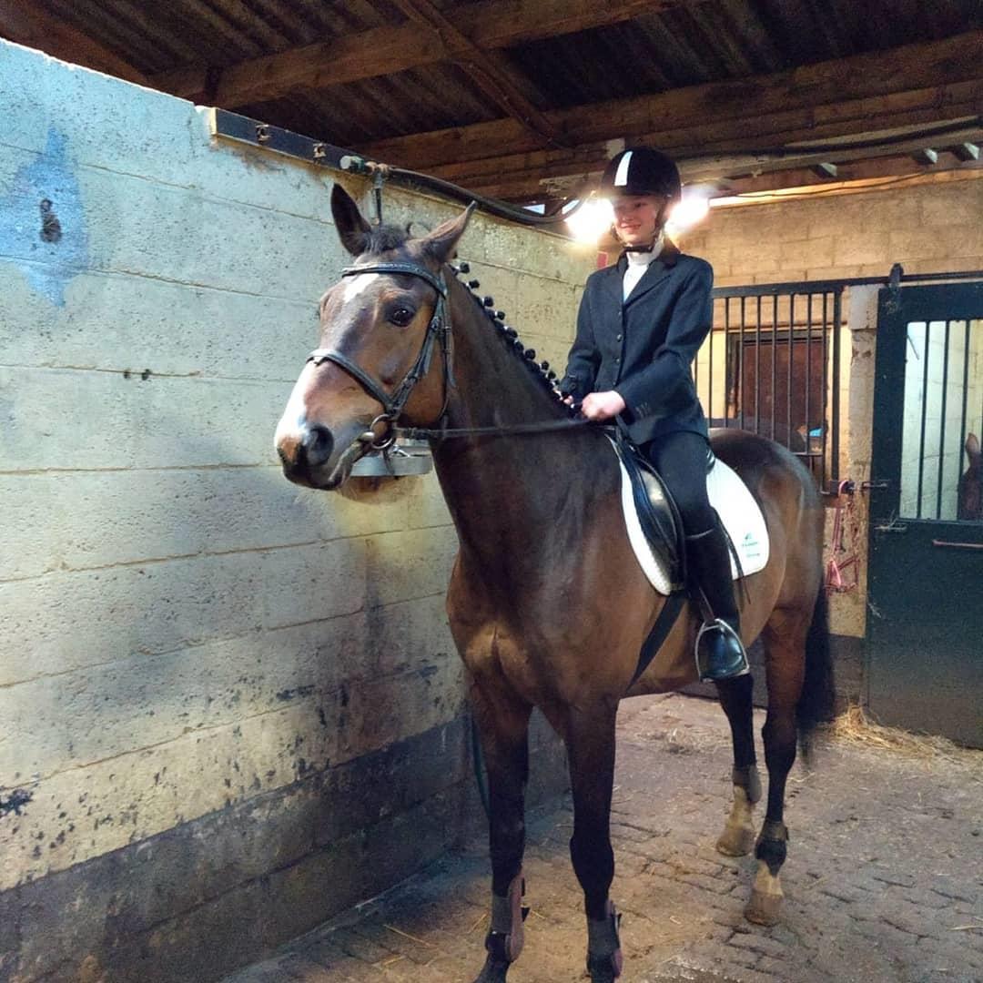 Bijrijder aangeboden/verzorg pony/paard gezocht